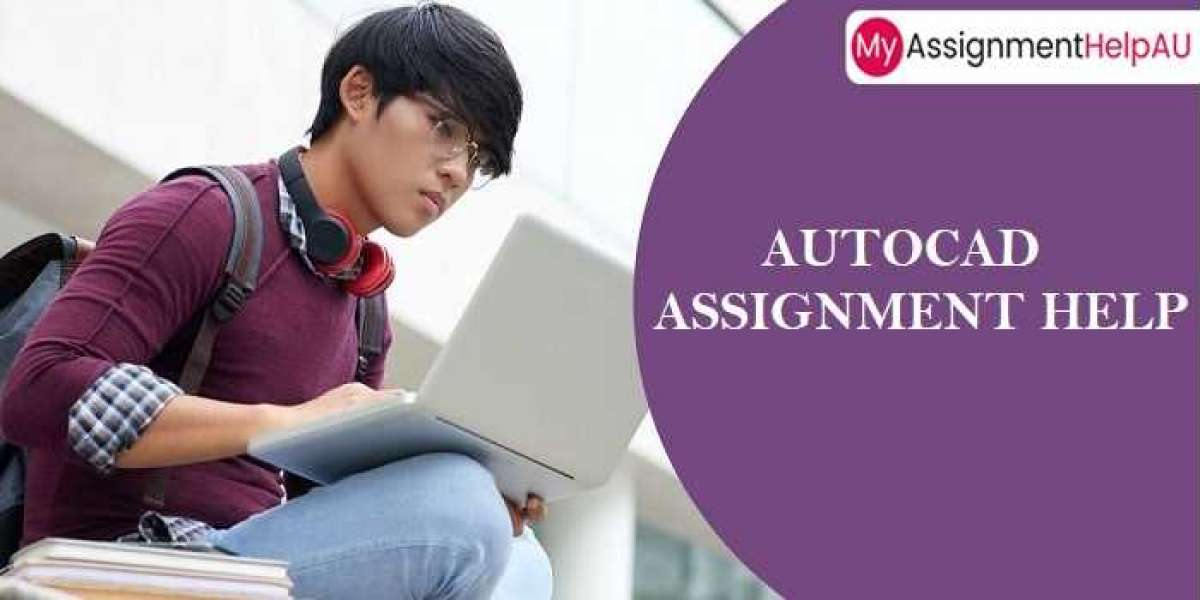 Need for AutoCAD assignment help Service