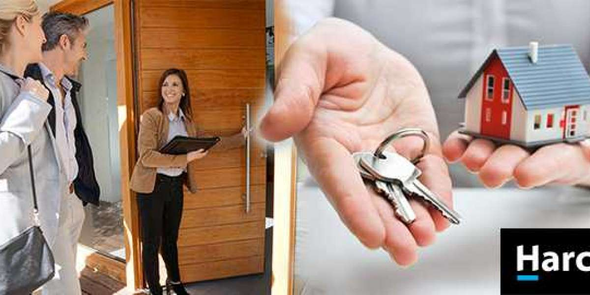 How Do Real Estate Agents Work To Provide Information?