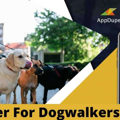 Revolutionize The Pet Care Industry With Dogwalking App Development Profile Picture