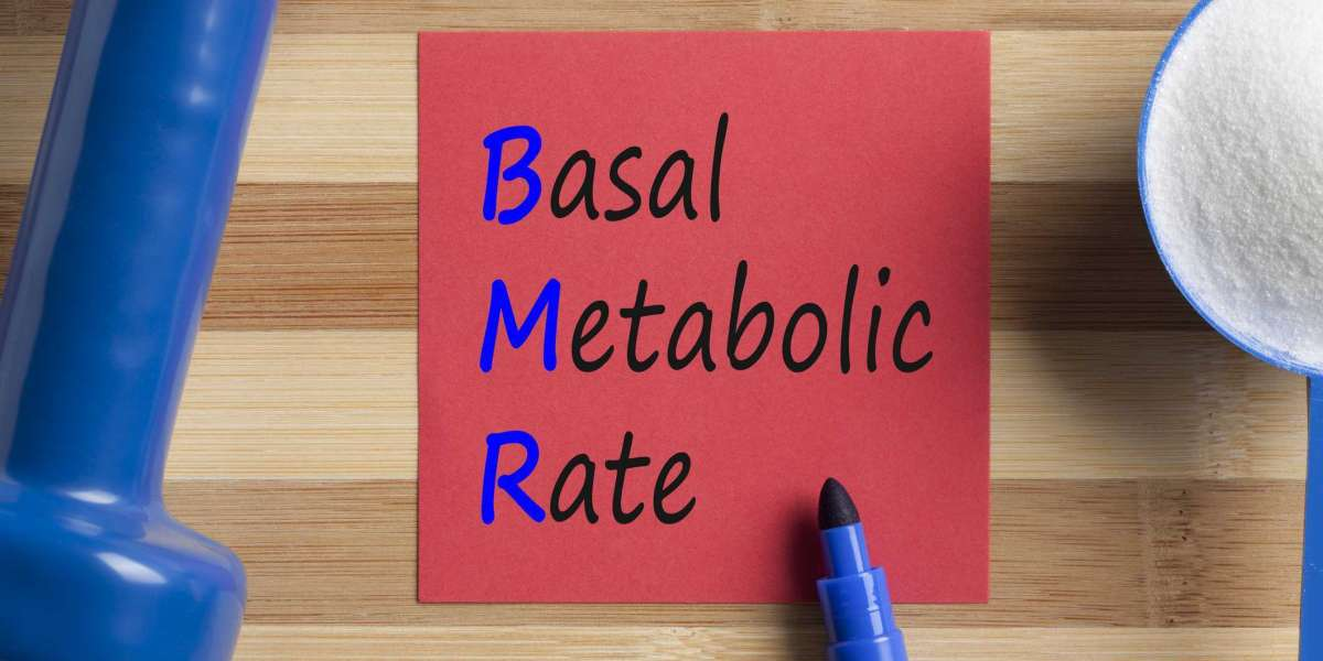 Know Some Insightful Information about Basal Metabolic Rate